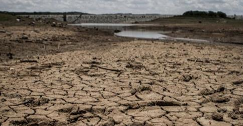 Article: Capitalism Will Starve Humanity By 2050