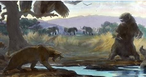 Article: Megafaunal extinctions driven by too much moisture